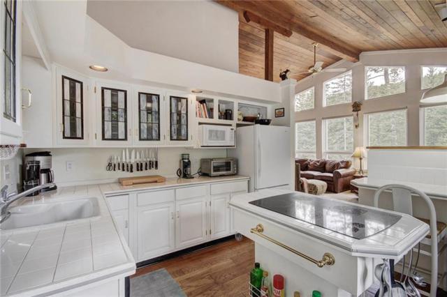 102 Sally Circle, Breckenridge, CO 80424 (MLS #S1009441) :: Colorado Real Estate Summit County, LLC