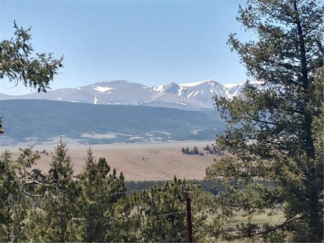 TBD Bonell Drive, Fairplay, CO 80440 (MLS #S1009601) :: Resort Real Estate Experts
