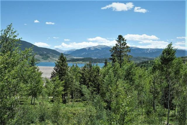 291 Lake View Drive, Silverthorne, CO 80498 (MLS #S1009694) :: Resort Real Estate Experts