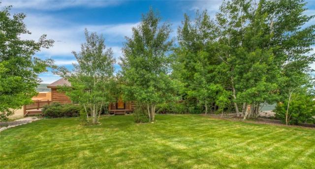115 County Road 1014, Silverthorne, CO 89298 (MLS #S1009797) :: Colorado Real Estate Summit County, LLC