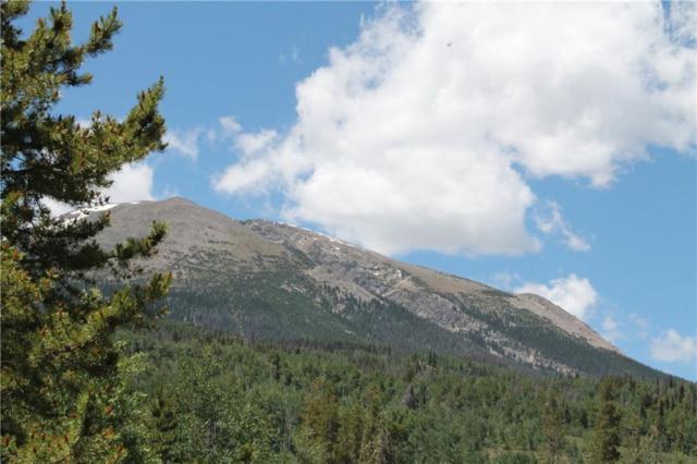 120 Windflower Lane, Frisco, CO 80443 (MLS #S1009819) :: Colorado Real Estate Summit County, LLC