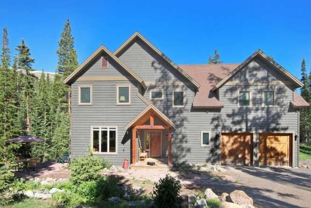 273 Bullion Mine Road, Montezuma, CO 80435 (MLS #S1009830) :: Colorado Real Estate Summit County, LLC