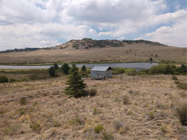 1367 Badger Creek Road, Hartsel, CO 80449 (MLS #S1009956) :: Resort Real Estate Experts