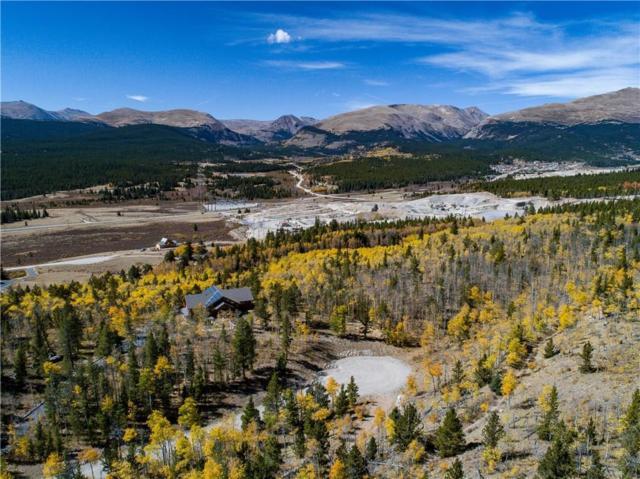 90 Dead Toad Road, Alma, CO 80420 (MLS #S1010021) :: Colorado Real Estate Summit County, LLC