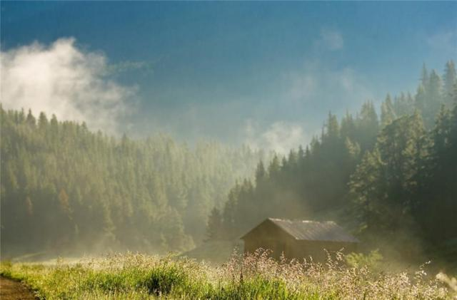 76 Bergen Trail, Breckenridge, CO 80424 (MLS #S1010030) :: Colorado Real Estate Summit County, LLC