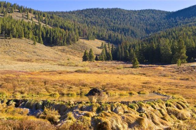 1050 Muggins Gulch Road, Breckenridge, CO 80424 (MLS #S1010031) :: Colorado Real Estate Summit County, LLC