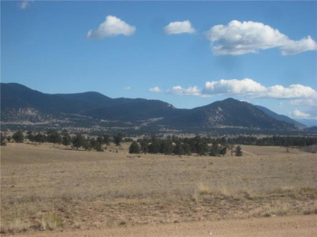 1202 Superstition Trail, Hartsel, CO 80449 (MLS #S1010035) :: Resort Real Estate Experts