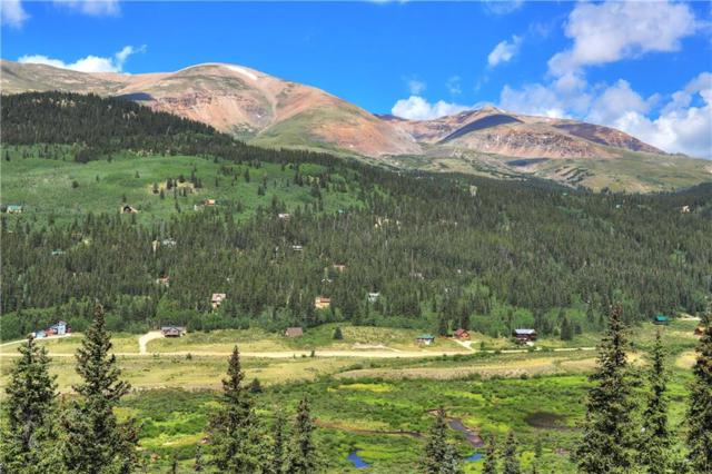 2343 County Road 6, Alma, CO 80420 (MLS #S1010069) :: Resort Real Estate Experts
