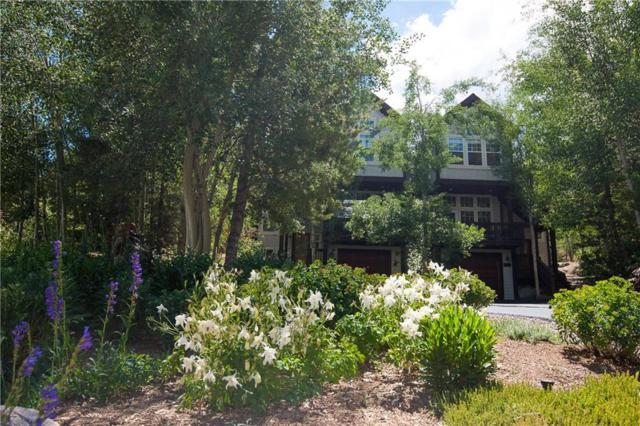 303 Kestrel Lane, Silverthorne, CO 80498 (MLS #S1010133) :: Resort Real Estate Experts