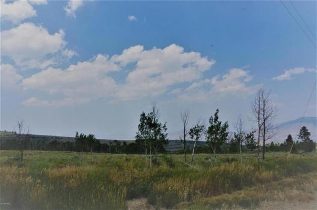 TBD Spring Creek Ranch Road, Silverthorne, CO 80498 (MLS #S1010382) :: Colorado Real Estate Summit County, LLC