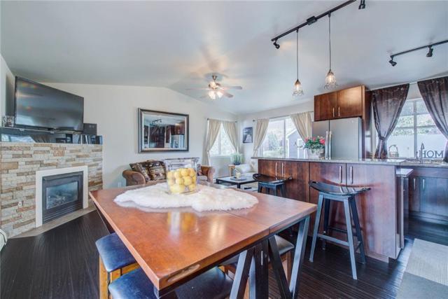 796 Alpine Road, Dillon, CO 80435 (MLS #S1010591) :: Colorado Real Estate Summit County, LLC