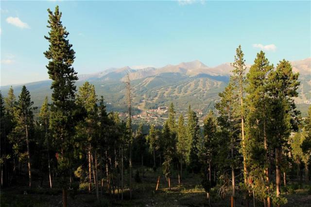 1030 Gold Run Gulch Road, Breckenridge, CO 80424 (MLS #S1010695) :: Resort Real Estate Experts