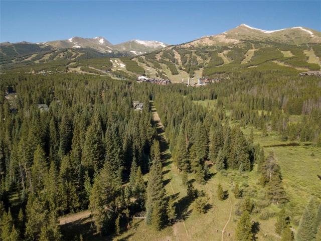 205 Cucumber Drive, Breckenridge, CO 80424 (MLS #S1010722) :: Resort Real Estate Experts