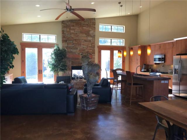 253 Highwood Terrace, Frisco, CO 80443 (MLS #S1010861) :: Colorado Real Estate Summit County, LLC