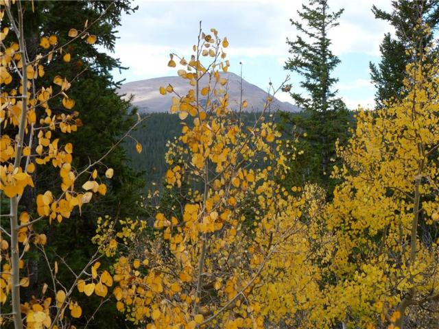 970 Guymard, Fairplay, CO 80440 (MLS #S1011477) :: Colorado Real Estate Summit County, LLC