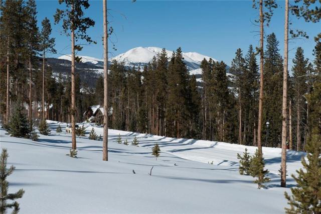 370 Westerman Road, Breckenridge, CO 80424 (MLS #S1011834) :: Colorado Real Estate Summit County, LLC