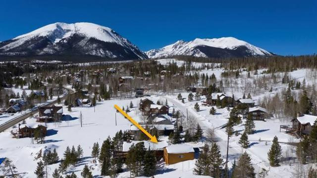 206 Royal Red Bird Drive, Silverthorne, CO 80498 (MLS #S1012175) :: Colorado Real Estate Summit County, LLC