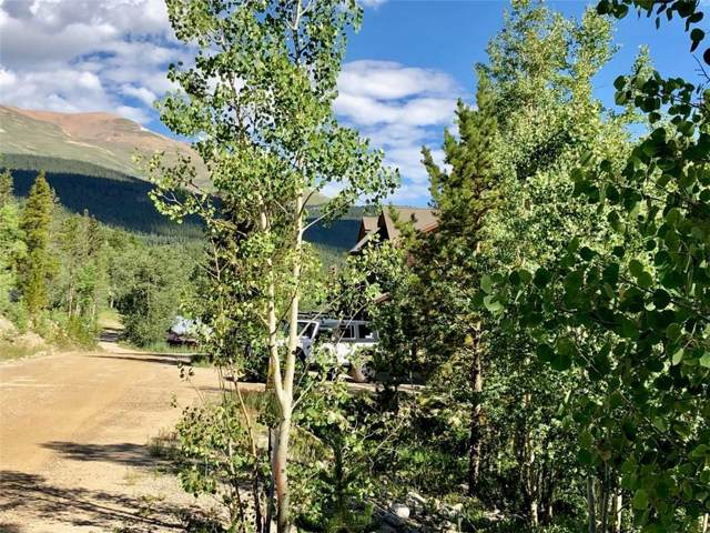 TBD N Oak Street, Alma, CO 80420 (MLS #S1012181) :: Colorado Real Estate Summit County, LLC
