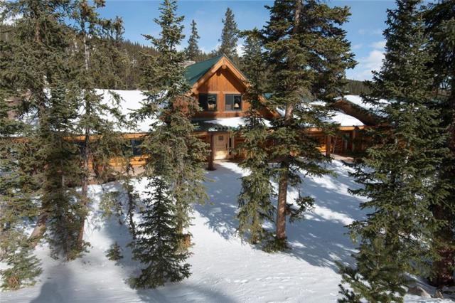 1037 Gold Pan Lane, Fairplay, CO 80440 (MLS #S1012225) :: Resort Real Estate Experts