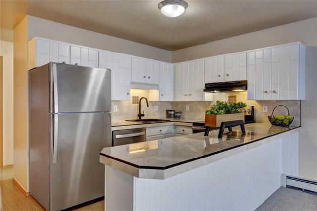 1173 NE Straight Creek Drive NE #303, Dillon, CO 80435 (MLS #S1012283) :: Colorado Real Estate Summit County, LLC
