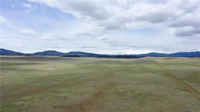 000 County Road 55, Hartsel, CO 80449 (MLS #S1012400) :: Colorado Real Estate Summit County, LLC