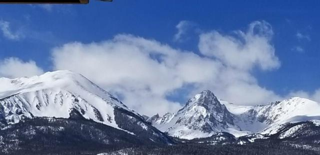 68 Ansels View Trail, Silverthorne, CO 80498 (MLS #S1012403) :: Resort Real Estate Experts