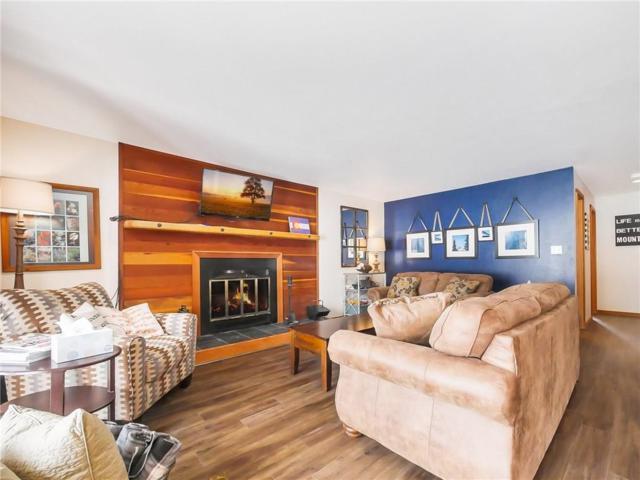 91100 Ryan Gulch Road #113, Wildernest, CO 80498 (MLS #S1012539) :: Colorado Real Estate Summit County, LLC