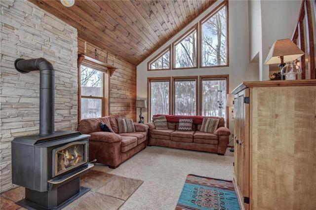 505 Warm Springs Road, Fairplay, CO 80440 (MLS #S1012564) :: Colorado Real Estate Summit County, LLC