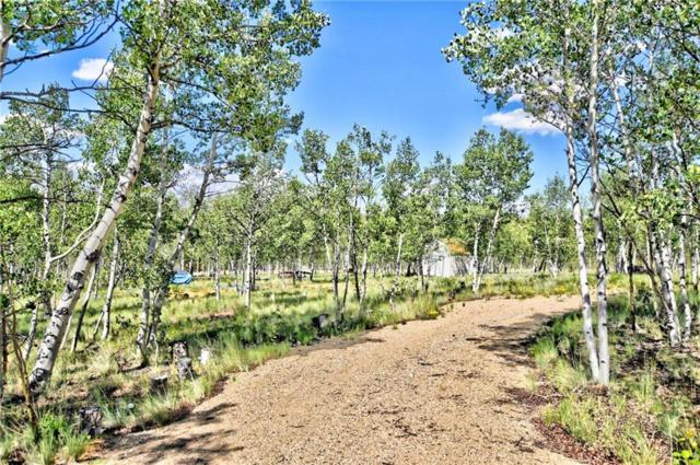 55 Bear Gulch Way, Jefferson, CO 80456 (MLS #S1012628) :: Colorado Real Estate Summit County, LLC