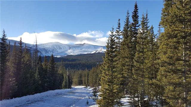 Lot 1189 Guymard Road, Fairplay, CO 80440 (MLS #S1012769) :: Resort Real Estate Experts