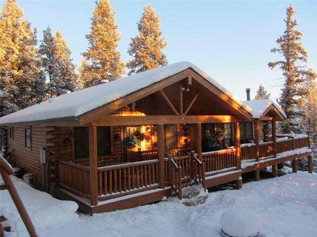 1699 Redhill Road, Fairplay, CO 80440 (MLS #S1013045) :: Resort Real Estate Experts