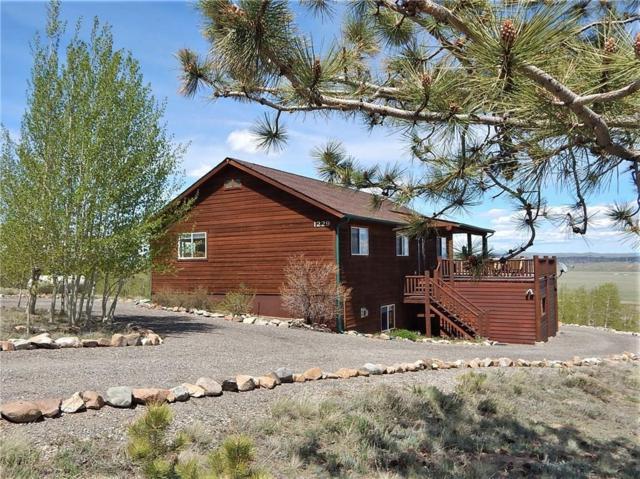 1229 Sheep Ridge Road, Fairplay, CO 80440 (MLS #S1013047) :: Colorado Real Estate Summit County, LLC