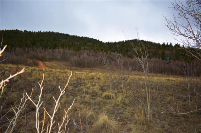 1240 Night Hawk, Como, CO 80456 (MLS #S1013089) :: Colorado Real Estate Summit County, LLC