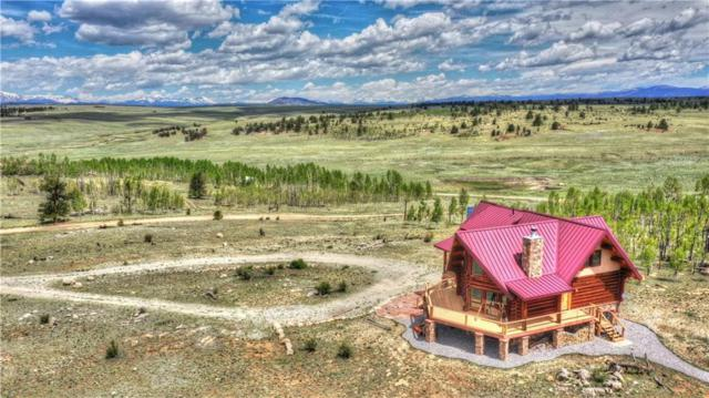 664 Moonbeam Drive, Hartsel, CO 80449 (MLS #S1013283) :: Resort Real Estate Experts