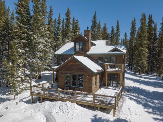437 Ansley Avenue, Alma, CO 80420 (MLS #S1013393) :: Resort Real Estate Experts