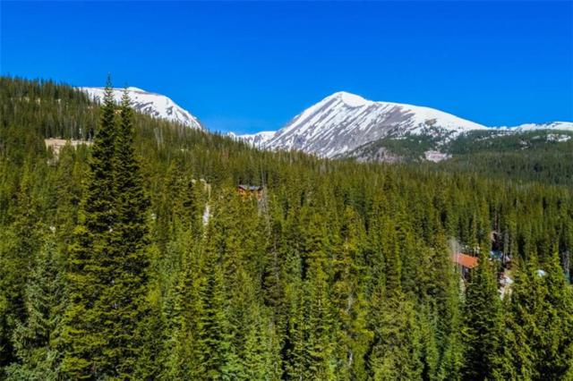 556 Cty Rd 674, Breckenridge, CO 80424 (MLS #S1013493) :: Resort Real Estate Experts