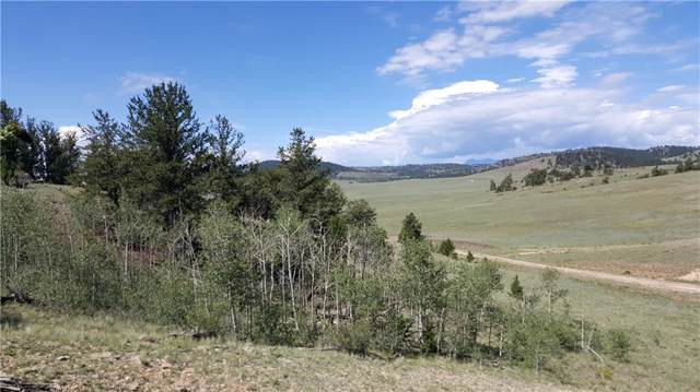 780 Cathy Drive, Hartsel, CO 80449 (MLS #S1013623) :: Colorado Real Estate Summit County, LLC