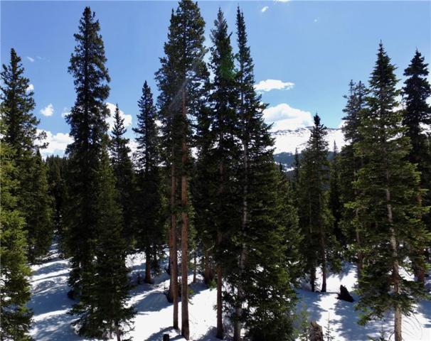 74 and 104 Camron Lane, Breckenridge, CO 80424 (MLS #S1013681) :: Colorado Real Estate Summit County, LLC