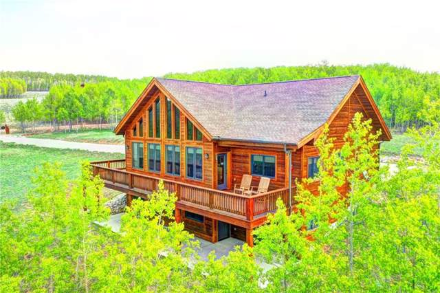 981 Glacier Peak, Jefferson, CO 80456 (MLS #S1013803) :: Colorado Real Estate Summit County, LLC