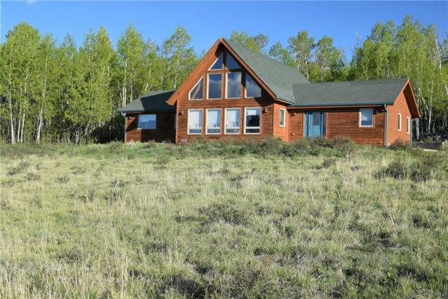 507 Bluestem Way, Fairplay, CO 80440 (MLS #S1013900) :: Resort Real Estate Experts
