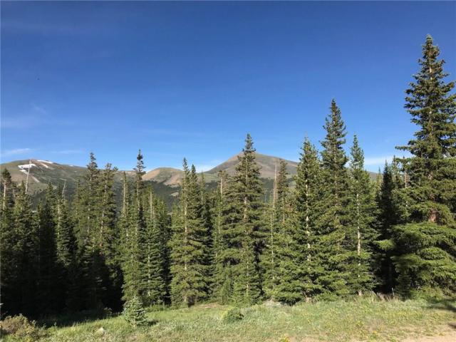 209 Pyrite Place, Alma, CO 80420 (MLS #S1013904) :: Resort Real Estate Experts