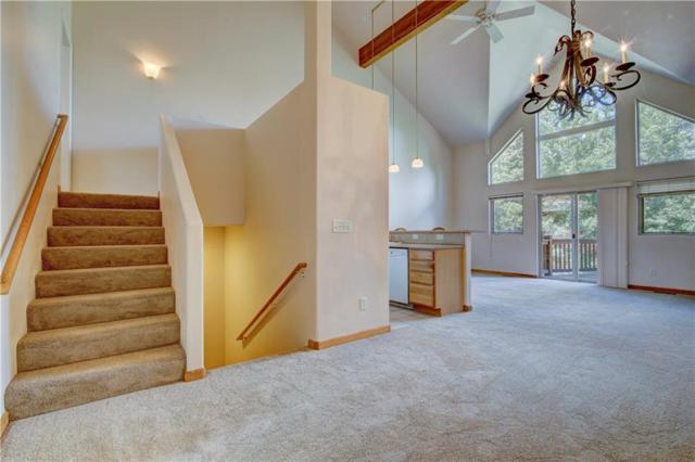 142 Burgundy Circle #142, Wildernest, CO 80498 (MLS #S1013917) :: Colorado Real Estate Summit County, LLC