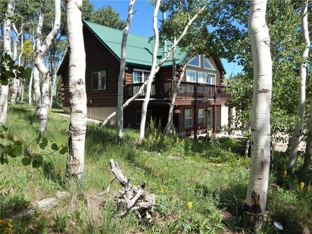 3106 High Creek Road, Fairplay, CO 80440 (MLS #S1013954) :: Resort Real Estate Experts