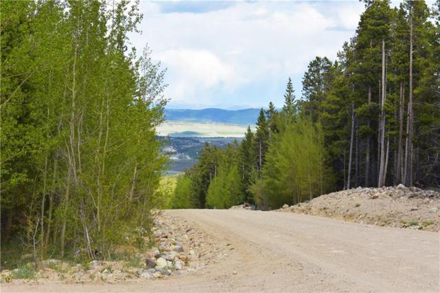 1344 Deer Trail, Fairplay, CO 80440 (MLS #S1013996) :: Dwell Summit Real Estate