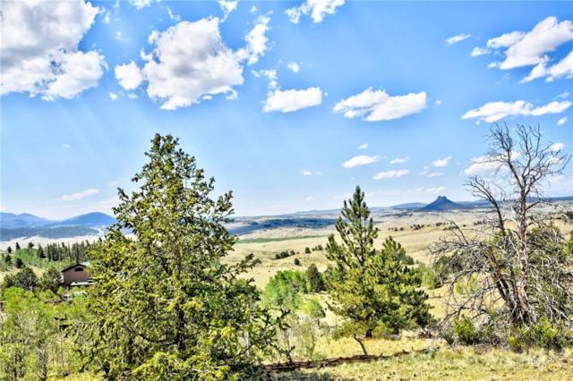 639 Spade Place, Jefferson, CO 80456 (MLS #S1014001) :: Colorado Real Estate Summit County, LLC