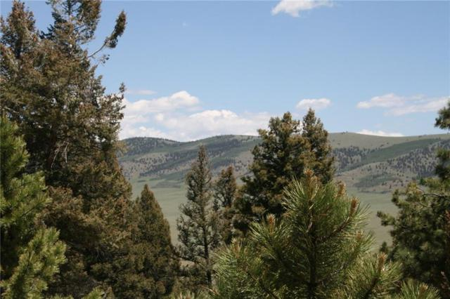 000 Redhill Road, Fairplay, CO 80440 (MLS #S1014363) :: Colorado Real Estate Summit County, LLC