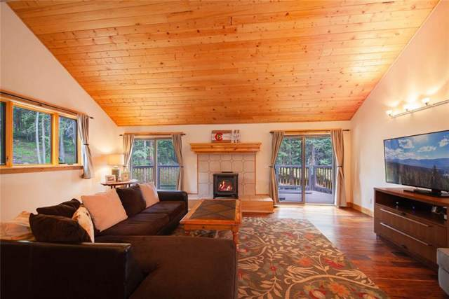 377 County Road 675, Breckenridge, CO 80424 (MLS #S1014425) :: Resort Real Estate Experts