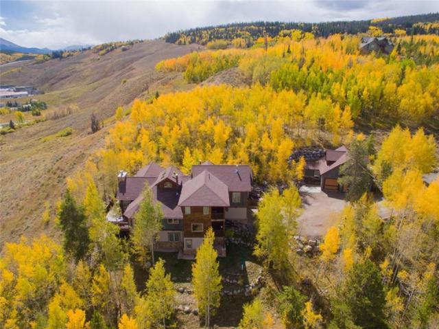 1757 Ruby Road, Silverthorne, CO 80498 (MLS #S1014580) :: Colorado Real Estate Summit County, LLC