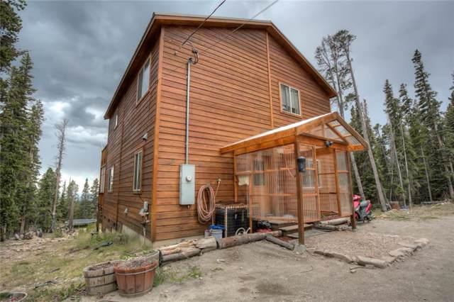 872 Puma Place, Fairplay, CO 80440 (MLS #S1015321) :: Colorado Real Estate Summit County, LLC