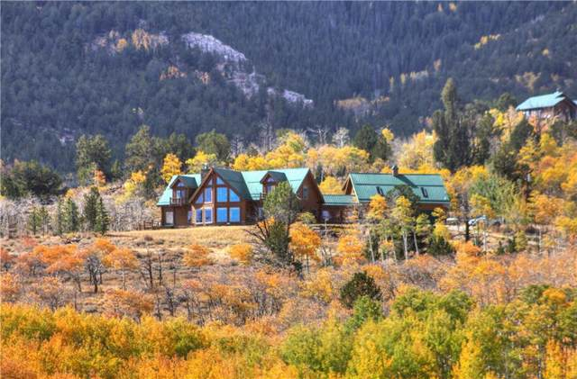 7195 Co Road, Fairplay, CO 80440 (MLS #S1015644) :: Dwell Summit Real Estate